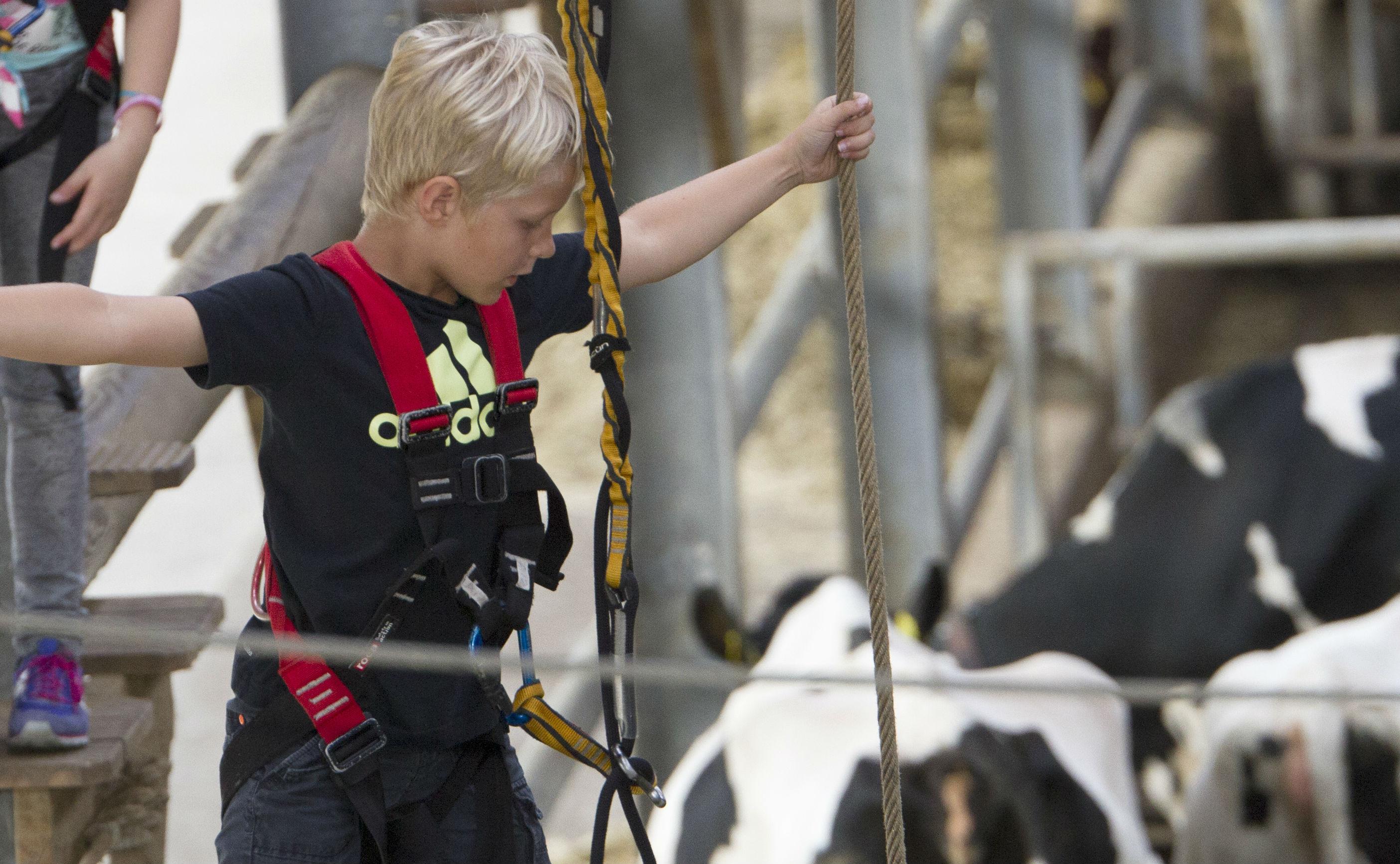 Koe en jongen Leekzicht aangepast